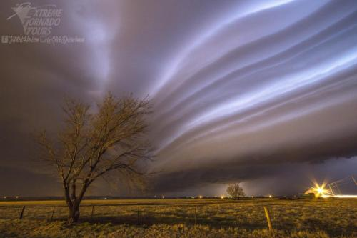 Multi-stack Shelf Cloud